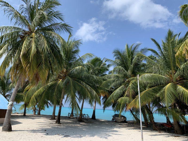 義実家島のビーチ
