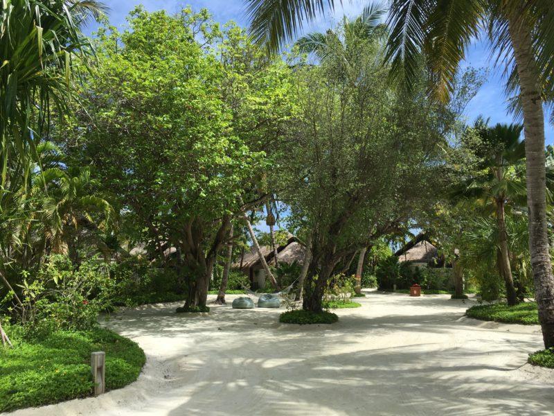 Anantara Dhigu Resort - Garden