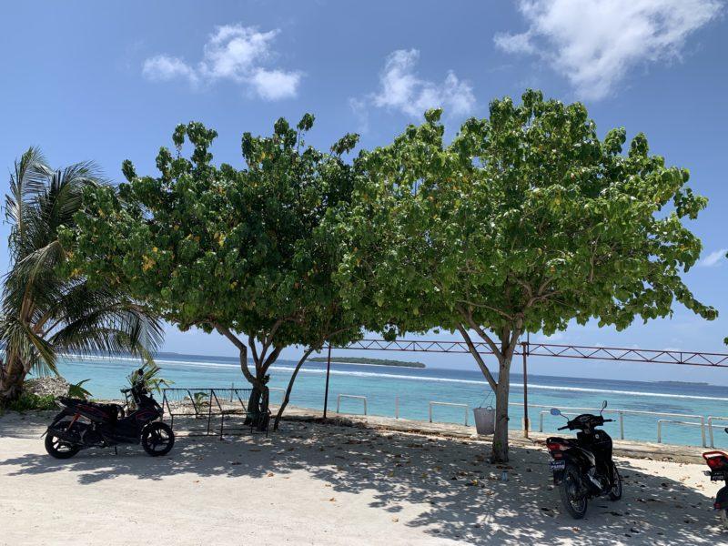 Maldives Local Island View